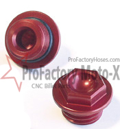 honda-crf-engine-plug-image2-copy.jpg